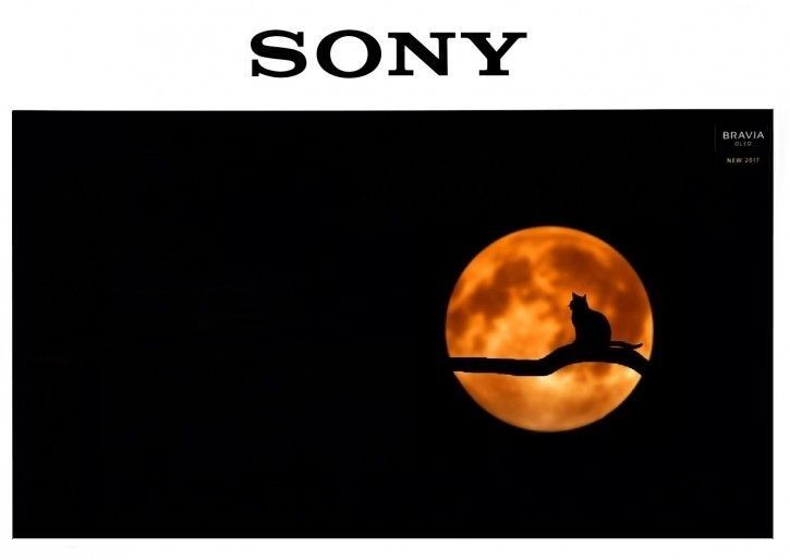 Sony KD-55A1 OLED TV